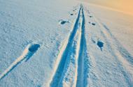 Jestřebí hory – aktuální sněhové zpravodajství 8. 1. 2021